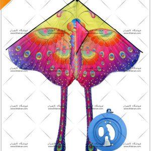 بادبادک پروانه درجه 1
