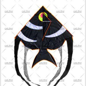 بادبادک ماهی آنجل متوسط